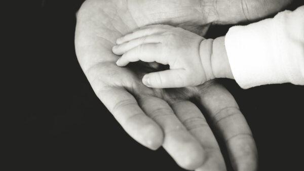 Child hand in parents